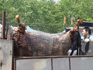 2-4白老牛肉まつり.jpg