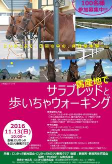 馬とふれあいウォーキングチラシデータ(オモテ).JPG