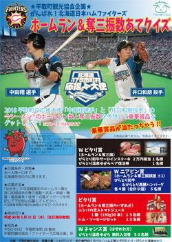 H30平取町ファイターズ応援企画(最終)_改(縮小版).jpg