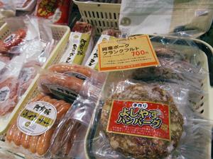 sugiyama110503.JPG