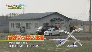 t130420_14.jpg